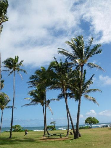 カウアイ島 2
